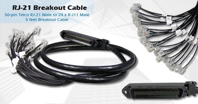 rj-21-breakout-cable